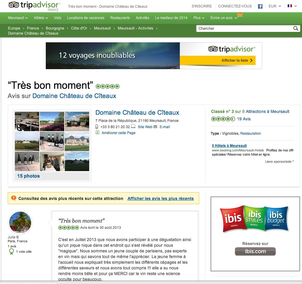 Les sites d'avis comme TripAdvisor influent les approches stratégiques des metteurs en marché.