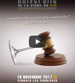 Video Université Vigne Vin 2017 Conseil Oenotourisme