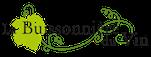 La Buissonnière du vin -logo mail